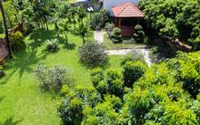 Ngôi nhà vườn rộng 1200m² đẹp ngất ngây, lúc lỉu trái cây ngay ở ngoại thành Hà Nội