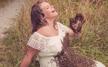 Bí mật bất ngờ phía sau bức hình mẹ bầu chụp hình cùng hàng ngàn con ong