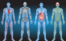 13 cách cân bằng lượng pH trong cơ thể bất cứ ai cũng nên làm để tránh bệnh tật