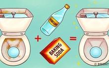 Làm sạch nhà tắm: Đổ giấm vào bồn cầu và xem điều kỳ diệu gì sẽ xảy ra nhé!