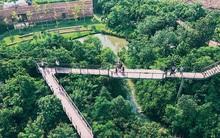 Đến Bangkok, đừng quên ghé khu rừng