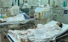 Cả gia đình thuê trực thăng nhập viện Bạch Mai cấp cứu vì ngộ độc nấm rừng