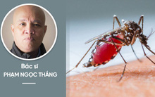 Chuyên gia cảnh báo: Mắc sốt xuất huyết, tuyệt đối không làm 1 việc kẻo