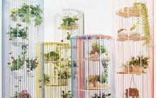 Năm 2017 sắp khép lại và 18 mẫu thiết kế nội thất cho gia đình đạt giải thưởng hàng đầu thế giới đã lộ diện