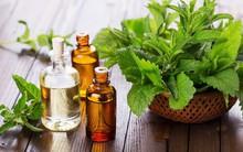 Nếu bị viêm mũi, viêm xoang: Đây là bài thuốc siêu dễ giúp bạn trị bệnh tại nhà nhờ loại lá quen thuộc