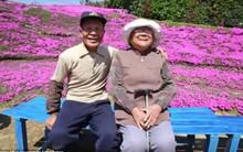 Lặng lẽ 2 năm trời trồng cả vườn hoa an ủi người vợ mù lòa, tình yêu của cụ ông này làm ai cũng phải rơi lệ