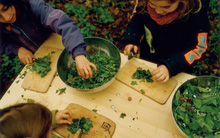 Trường mẫu giáo của những đứa trẻ tự do, sáng tạo và hạnh phúc nhất thế giới