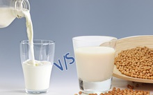 Nếu bạn băn khoăn cho con uống sữa bò hay sữa thực vật thì hãy đọc bài viết này