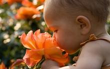 Dù vô tình hay cố ý, đừng để con trẻ tiếp xúc với 5 mùi hương này, tác hại sẽ khó lường đấy!