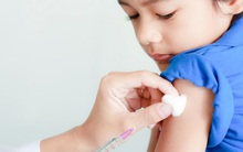 Bác sĩ nói gì về phương pháp chữa chó dại cắn không cần tiêm vắc xin đang được các mẹ tin sái cổ
