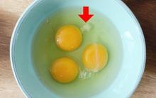 Vệt màu trắng đục dính vào lòng đỏ trứng ăn vào có sao không vậy?