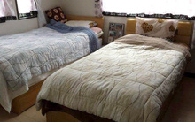 Lý do bất ngờ của việc ngày càng nhiều cặp vợ chồng Nhật ở chung nhà nhưng ngủ riêng giường