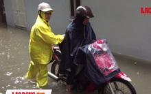 Hà Nội: Mưa lớn, nước cống, rác rưởi bủa vây hàng trăm ngôi nhà ở Yên Hòa