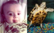 Bé 5 tháng tuổi bất ngờ tử vong, bác sĩ nghi ngờ do nhiễm khuẩn salmonella từ một loại vật nuôi phổ biến
