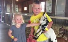 Sau khi đi thăm sở thú về, em gái 3 tuổi tử vong, anh trai 5 tuổi nguy kịch vì nhiễm khuẩn