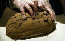 Đặt tảng bùn khô lên bàn ăn, khách khứa nhăn nhó nhưng khi nếm thử phải khen hết lời