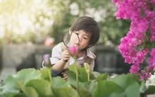 20 dấu hiệu cho thấy con bạn là một đứa trẻ tài năng