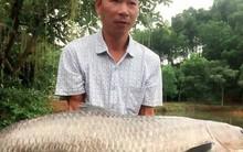 Ông bố đam mê câu cá dọn nhà ra
