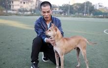 Gặp người đàn ông gắn bó với nghề nuôi chó Phú Quốc hơn 30 năm tại Hà Nội