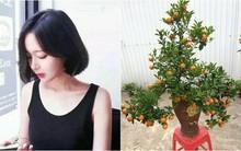 Cô nàng 27 tuổi dẫn người yêu về ra mắt dịp Tết, ép biếu nhà mình cây cảnh, giỏ quà Tết khiến chị em tranh cãi