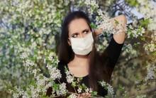 Nhiều người dễ bị dị ứng vào mùa xuân, hãy chữa bằng cách siêu đơn giản với những thứ có sẵn trong nhà