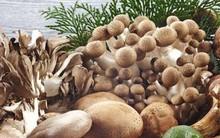 Tăng cường bổ sung các loại thực phẩm giàu vitamin B2 để thúc đẩy quá trình trao đổi chất trong cơ thể