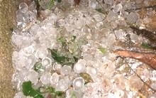 Mộc Châu: Cơn giông bất chợt kèm mưa đá khiến người dân xôn xao