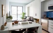 Căn hộ chung cư có diện tích chỉ khoảng 16m² nhưng không thiếu một khu vực chức năng nào mà lại còn đẹp đến ngẩn ngơ