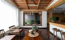 Căn hộ chung cư rộng, nhiều cây và thoáng như nhà vườn dưới mặt đất ở Cầu Giấy, Hà Nội