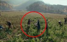 Phim Hàn để lọt sóng cảnh diễn viên bị bạn diễn đánh văng đầu búa vào mặt