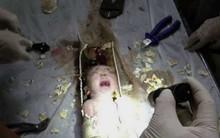 Vừa sinh con xong người phụ nữ có hành động tàn ác đến