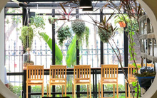 4 quán cafe vừa xanh, vừa xinh ở Hà Nội cho những người dịp lễ này không đi đâu