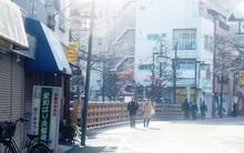 5 lí do để Nhật Bản trở thành quốc gia sạch bậc nhất thế giới và được nhiều người ngưỡng mộ