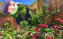 Khu vườn bạt ngàn hoa và rau quả sạch của bà chủ cửa hàng pha lê người Việt trên đất Ý