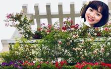 Đến thăm khu vườn hồng rực rỡ của người phụ nữ yêu hoa đất Hải Dương