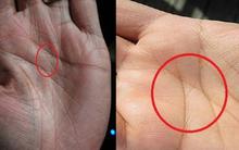 Nhìn vào lòng bàn tay mình và xem đi, nếu sở hữu đường chỉ tay như thế này, bạn đúng là