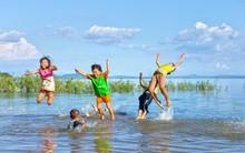 Mùa hè của mẹ và những chú cá không biết bơi