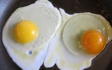 Quả trứng có lòng đỏ sẫm màu khác biệt gì với quả lòng đỏ nhạt?