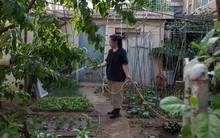 Ngôi nhà được cải tạo bằng vật liệu tái chế và cuộc sống ý nghĩa của cô gái quanh năm thu lượm rác thải để làm sạch môi trường