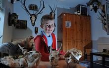 Cậu bé 12 tuổi tự… nhồi bông xác động vật