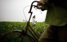 Ngắm toàn cảnh Việt Nam qua ống kính nhiếp ảnh gia Mỹ