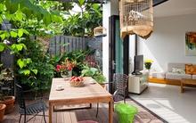 Ngôi nhà có sân vườn cực đẹp ở Sài Gòn khiến báo Tây không tiếc lời khen ngợi