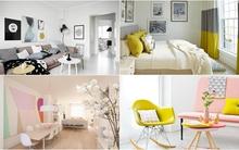 6 sắc màu trang trí nhà bất biến cùng thời gian