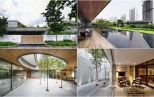 Ngôi nhà xanh được xây dựng trên mảnh đất rộng hơn 1000m²