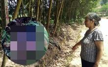 Vụ thi thể bé 2 tuổi bị mẹ vứt vào bụi: Người mẹ khai gì tại cơ quan điều tra?