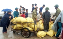 Thanh Hóa: Người dân hối hả gia cố nhà cửa, đắp đê chắn sóng phòng chống bão số 3