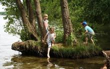 Buổi cắm trại đặc biệt dành cho trẻ mẫu giáo ở Đức