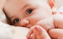 Trẻ bú mẹ sẽ kiếm được nhiều tiền và thành đạt hơn khi trưởng thành