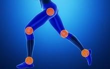 Bạn sẽ giật mình khi biết mình đã hủy hoại các cơ bắp trong cơ thể như thế nào sau khi đọc thông tin này