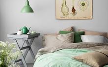 Những gợi ý kết hợp màu sắc cho không gian phòng ngủ vừa đẹp vừa sang